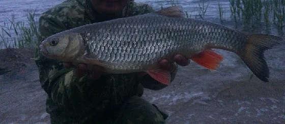 Рыбалка на Волге на сильном течении