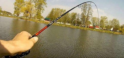 Рыбалка на Спиннинг Maximus Gravity