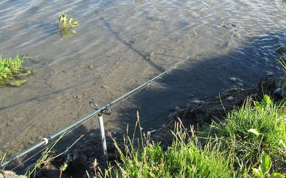 ошибки начинающих фидеристов при ловле на течении