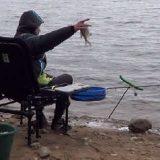 Ловля фидером на Вилейском Водохранилище