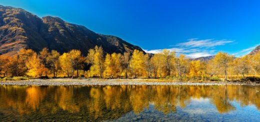Отдых на горном Алтае