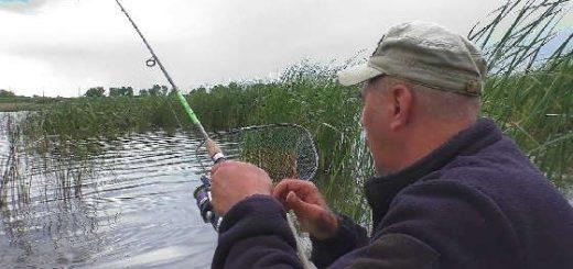 Ловля леща на реке в июне 2020