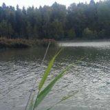 Перспективные места для ловли на реке