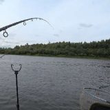 Рыбалка на ФИДЕР: Плотва, густера, карась, подлещик, судак