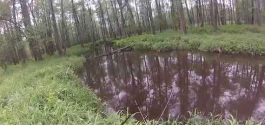 Рыбалка на малой реке в Калужской области