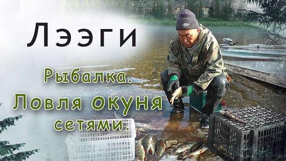 Ловля окуня сетями в Якутии
