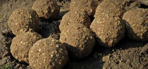 Простая и рабочая прикормка для карпа
