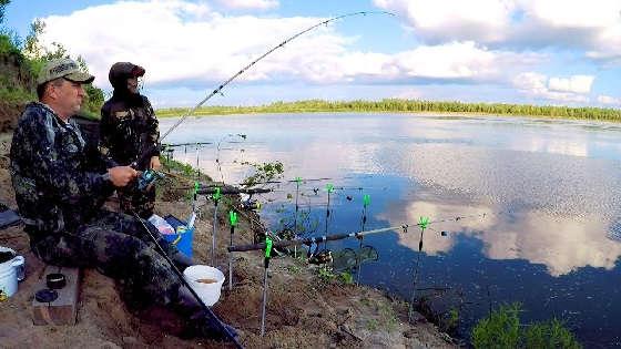 Устье реки Томь: ЛОВЛЯ Леща и Язя на ФИДЕР