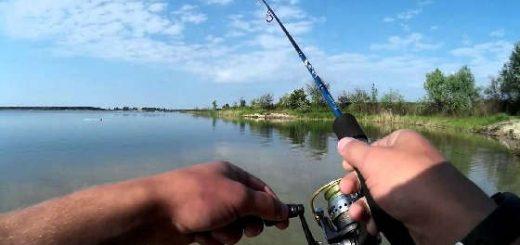 Favorite Blue Bird для микроджига на озере