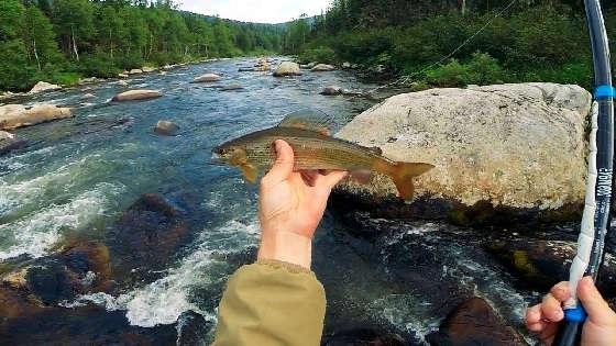 Горная рыбалка по хариусу