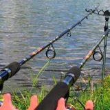 Как поймать много рыбы на ФИДЕР?
