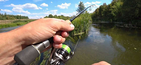 Рыбалка На Дикой Красивой Реке На Спиннинг