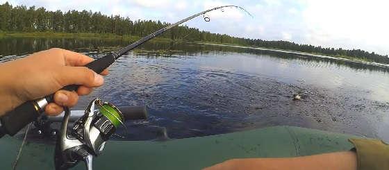 Рыбалка на ВЕРТУШКУ