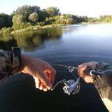 Рыбалка на реке Сейм на окуня и щуку