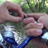 Рыбалка для души: Ловля в проводку