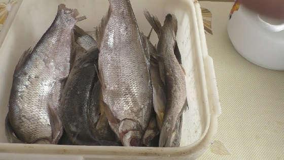 Вяленая рыба: Как правильно засолить, сколько вымачивать