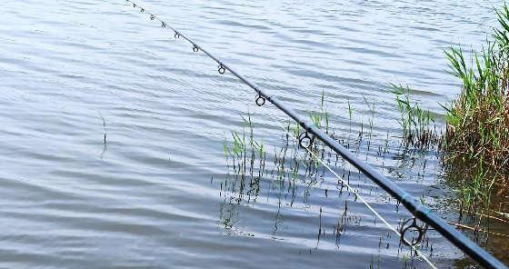 Как ловить фидером на реке?