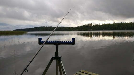 Как наловить леща на озере