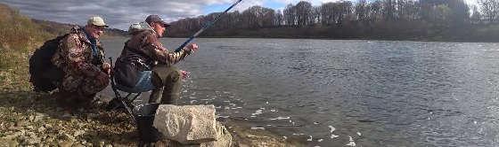 Осенняя Рыбалка на Живца 2020