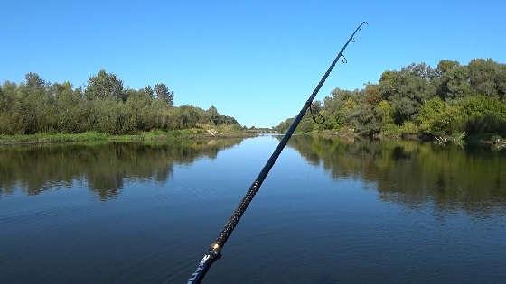 Рыбалка на джиг и вертушки на реке Десна