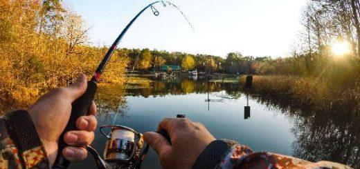 Рыбалка на спиннинг осенью