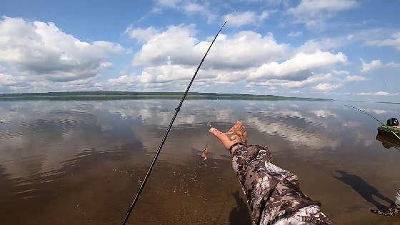 Рыбалка на СПИННИНГ в последний день лета 2020