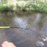 Рыбалка на таёжной реке