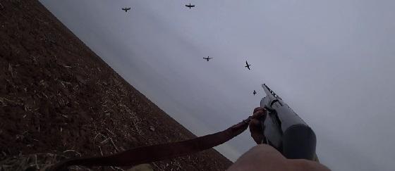 Двухдневная охота на утку