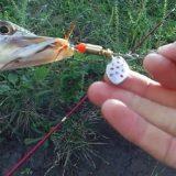 Как ловить на Блесну Вертушку