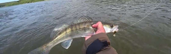 Осенняя Рыбалка на Фидер 2020