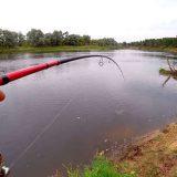 Рыбалка на отбойных струях в сентябре