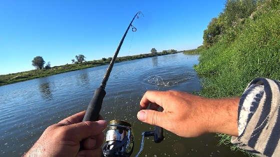 Рыбалка на Оке на СПИННИНГ в августе 2020