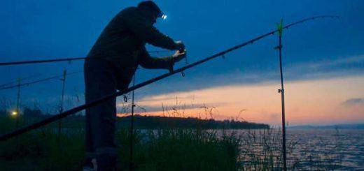 рыбалка осенним вечером на донки