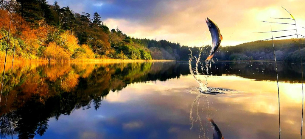 Рыбалка в Астрахани на Нижней Волге