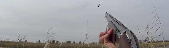 Охота на гуся пятёркой