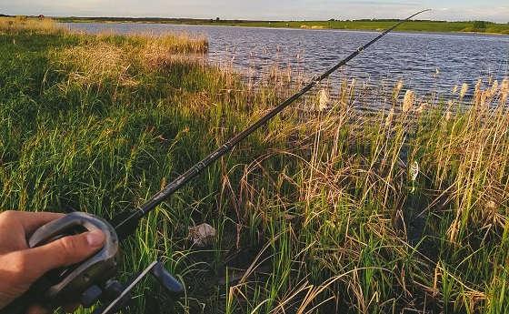 Ловля щуки в траве на джерки
