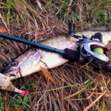 Рыбалка на МАЛОЙ РЕКЕ осенью