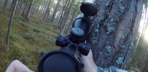 Охота на рябчика с мелкашкой