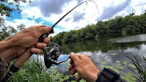 Рыбалка с ночевкой: Спиннинг и самоловки