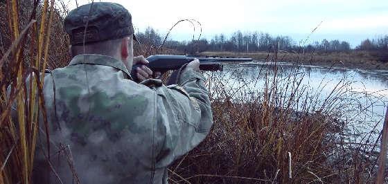 Хорошая вечерка охоты на утку в октябре