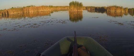 Вечерняя охота на утку