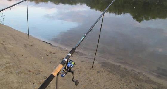 ФИДЕР или ПОПЛАВОК: чем лучше ловить в ноябре?