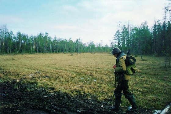 Охота на Глухаря на болоте