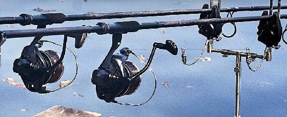Выбор катушки для карповой ловли: Бейтраннер или быстрый фрикцион