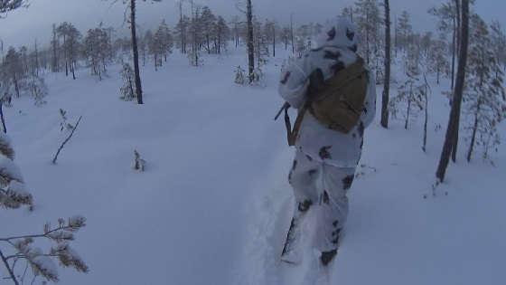 Охота на тетерева с подхода по снегу