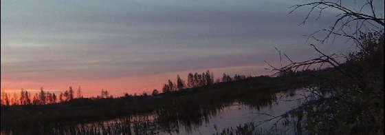 вечерка на утку в октябре
