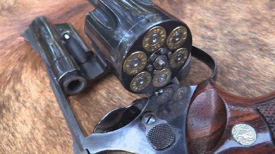 Model 29-2 44 Magnum