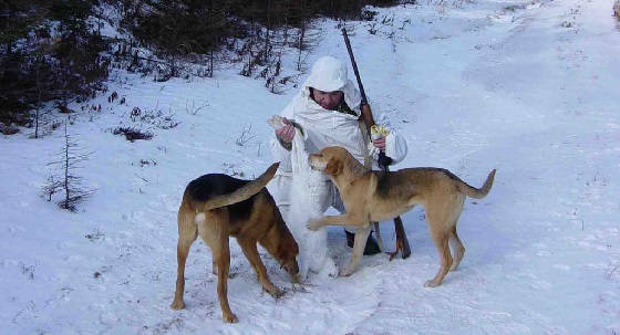 на охоте С ГОНЧИМИ в мороз