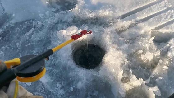 Рыбалка на Братском водохранилище