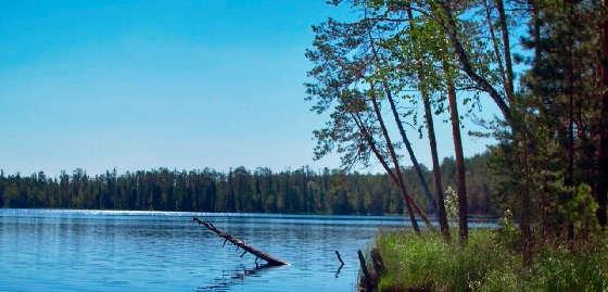 на диком озере